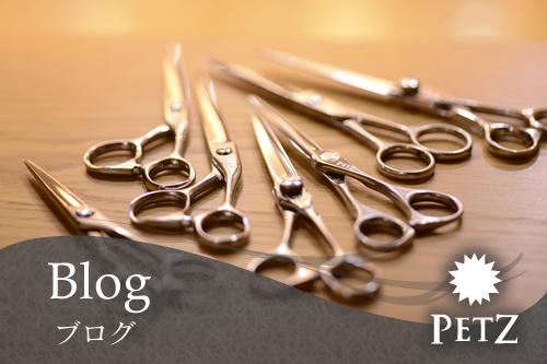 焼津市の美容室、美容院のPETZ(ペッツ)本店店舗ブログ
