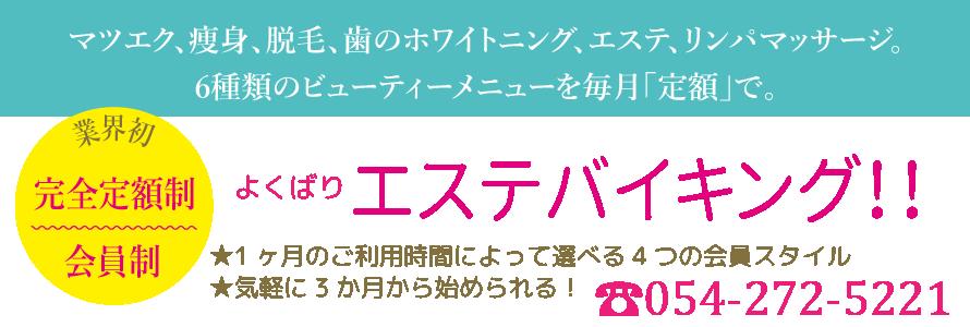 bgshizuoka-top